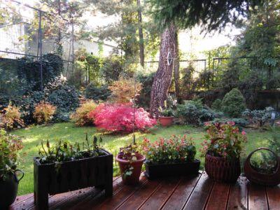 Ogród prywatny w Katowicach